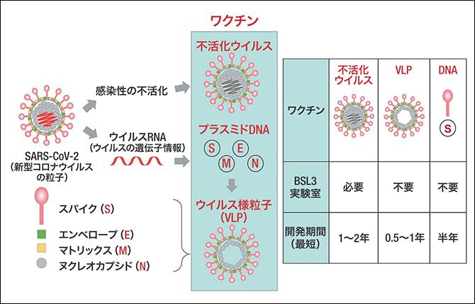 コロナ ワクチン 種類 新型コロナ: DNA・mRNA・ベクター